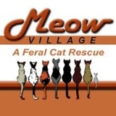 meowvillage